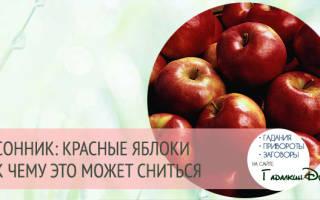 К чему снится большое красное яблоко сонник