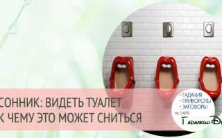 Сонник миллера туалет