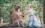 К чему снится медведь девушке сонник