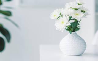 К чему снятся живые белые цветы сонник