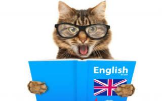 К чему снится говорящая кошка сонник