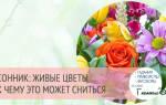 Сонник миллера цветы живые