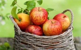Видеть во сне яблоки сонник