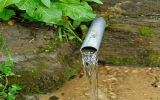 К чему снится родник с чистой водой сонник