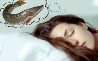 К чему снится ловить рыбу руками сонник