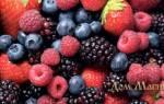 Сонник ягоды красные есть