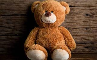 К чему снится плюшевый медведь большой сонник