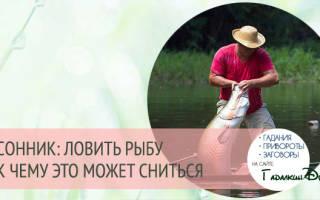 Сонник видеть как ловят рыбу