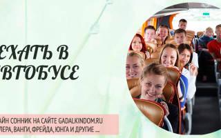 Сонник ехать в автобусе с людьми