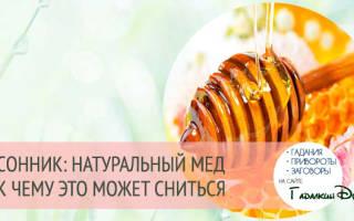 Есть мед во сне сонник