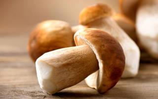 Сонник миллера грибы