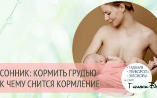 К чему снится кормление грудью чужого ребенка сонник