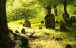 К чему снится быть на кладбище ночью сонник