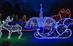 Видеть во сне новый год сонник