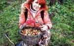 Собирать грибы во сне что значит сонник
