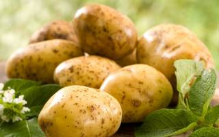 Сонник картофель видеть