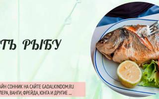 К чему снится есть рыбу во сне сонник
